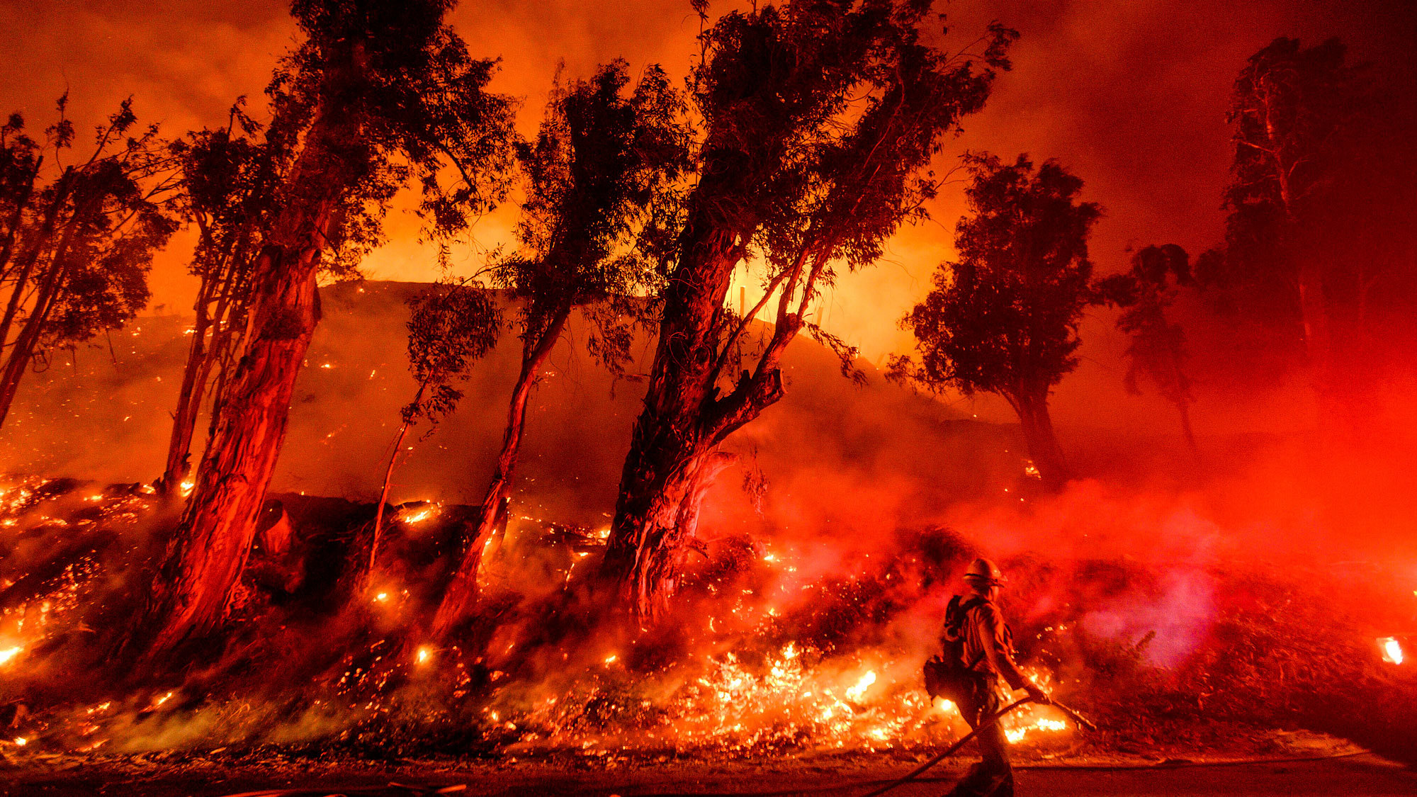 photo of Climate Whiplash: Wild Swings in Extreme Weather Are on the Rise image
