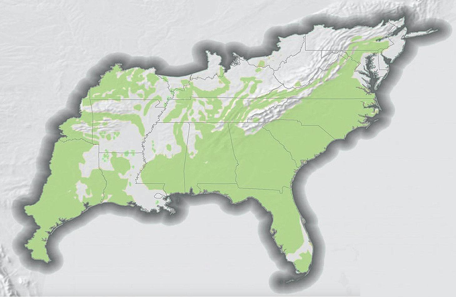 Historic Grasslands of the SE United States