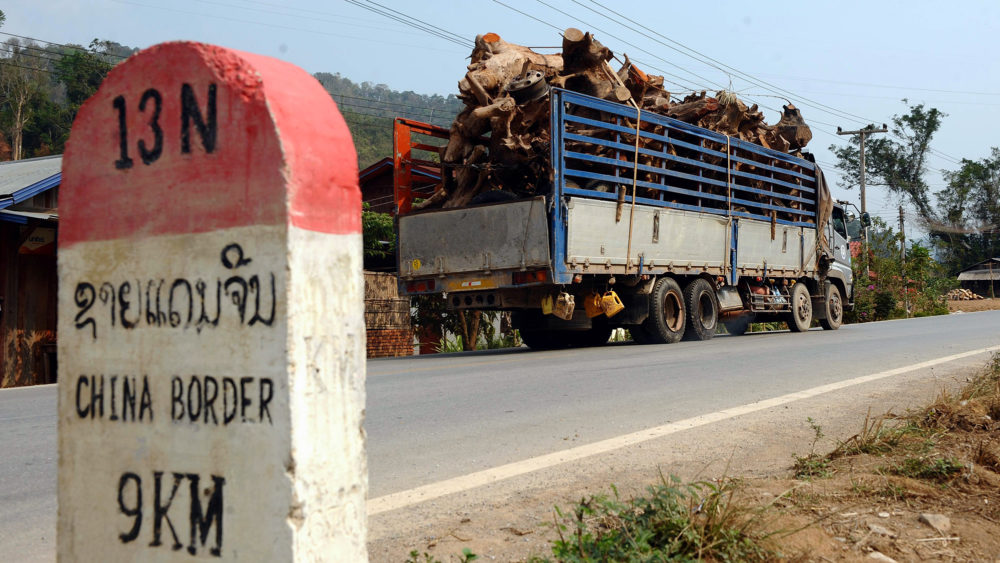 Timber being trucked through the northern Laos province of Louang Namtha on its way to the Chinese border.