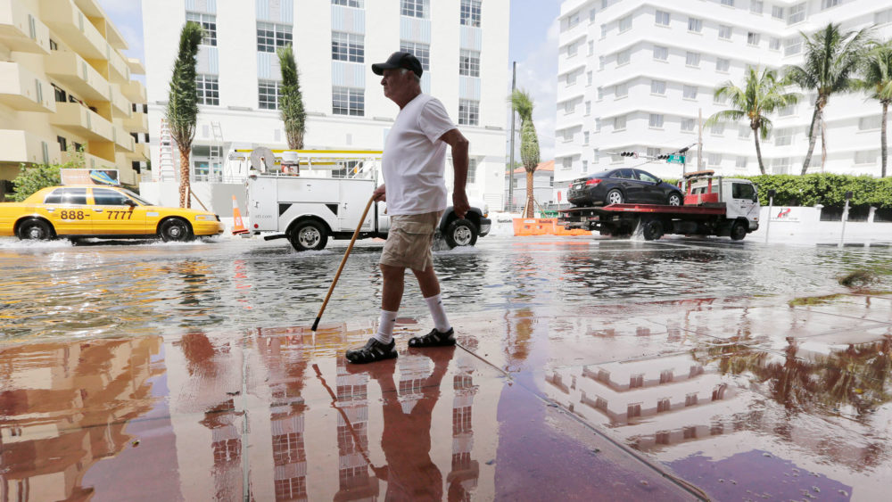 High-tide flooding in Miami Beach, Florida in September 2015. AP PHOTO/LYNNE SLADKY