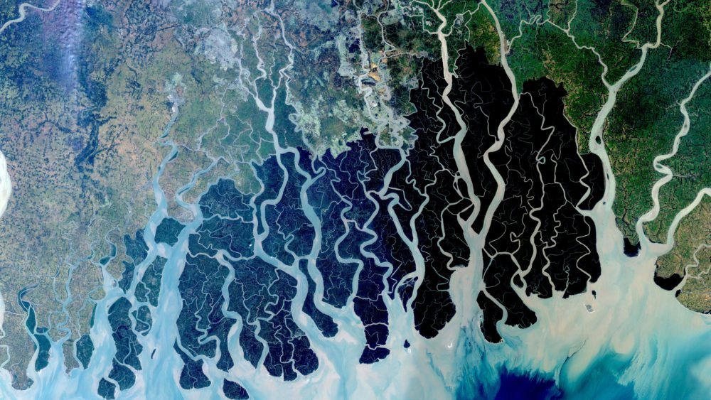 Satellite image of the Sundarbans coastal forest in Bangladesh, which is habitat for the endangered Bengal tiger. NASA