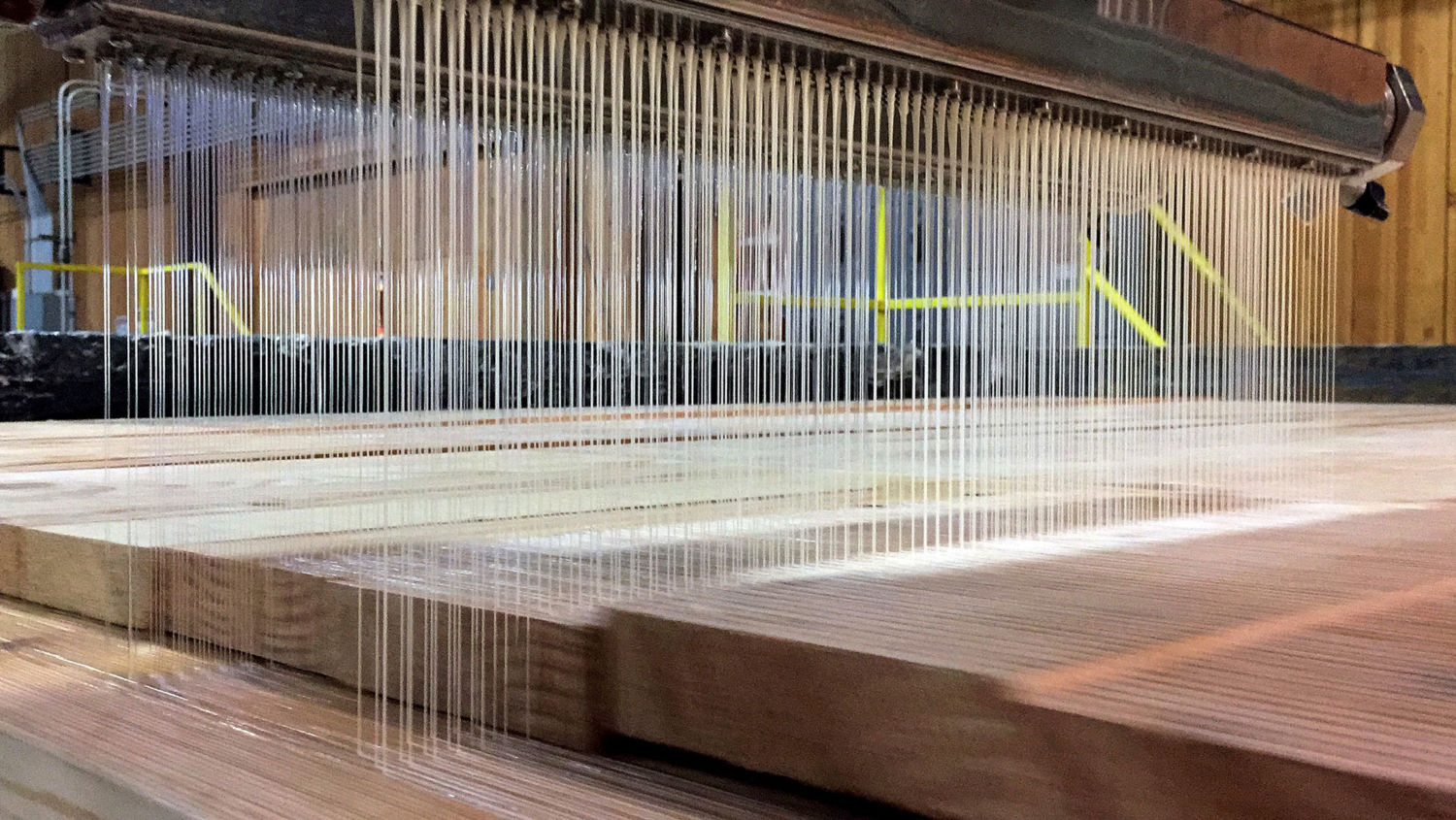 As Mass Timber Takes Off, How Green Is This New Building