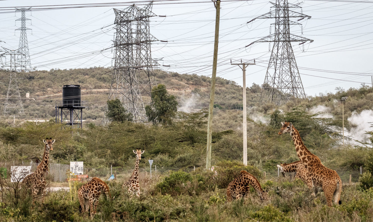 How Kenya's Push for Development Is Threatening Its Prized Wild Lands