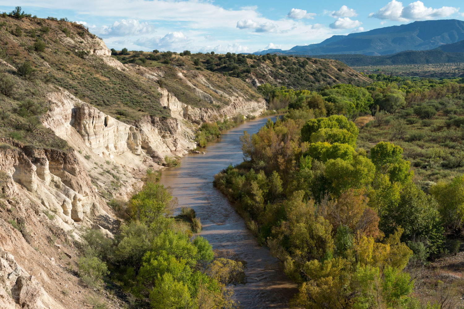 Running Dry: New Strategies for Conserving Water on the