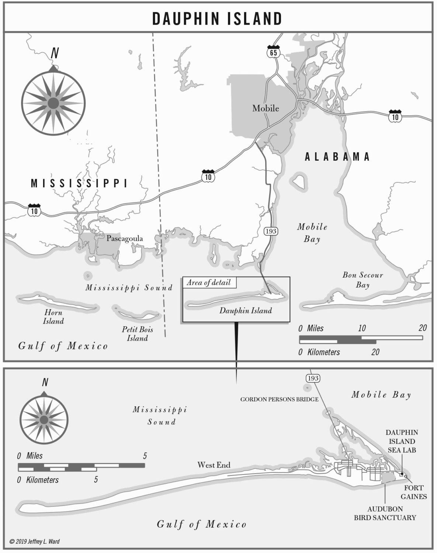Dauphin Island Alabama Map