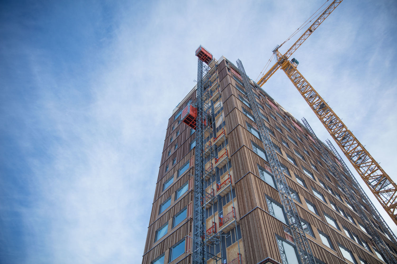 as mass timber takes off  how green is this new building