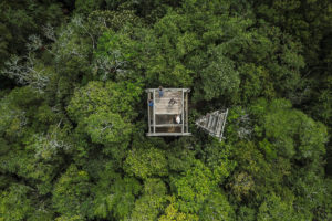 Aerial view of a tower in the Maya Biosphere Reserve's Uaxactun concession that is used by community members to monitor forest fires.