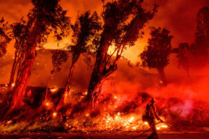Firefighters battle the Maria Fire in Santa Paula, California on November 1.
