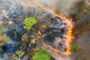 Aerial view of burning near the Phnom Tnout Phnom Pok Wildlife Sanctuary in northern Cambodia. During the dry season, hundreds of fires rage across the country, many started by loggers and farmers.