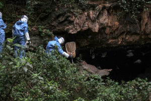 Researchers enter a cave in Uganda in 2018 to collect bats that carry the deadly Marburg virus.