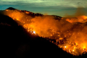 The Bobcat Fire burns through the Angeles National Forest in Southern California on September 17.