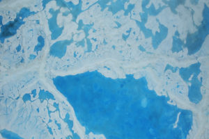 Meltwater on top of Arctic sea ice in July 2016.