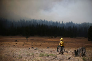 A U.S. Fish and Wildlife Service firefighter monitors the Rim Fire in August 2013 near Groveland, California.