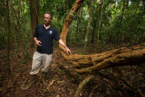 Ecologist Stefan Schnitzer with a liana, a type of woody jungle vine, on Panama's Barro Colorado Island.