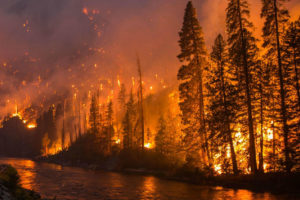 A forest fire blazes alongside a river in Washington state in 2014.