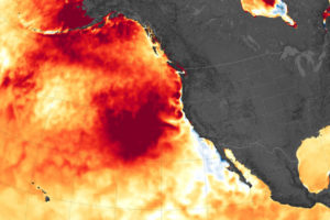 A marine heatwave off the west coast of North America in August 2019.