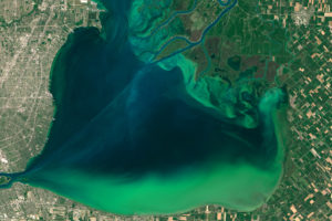 An algae bloom in Lake St. Clair in July 2015. The lake is bordered by Detroit, Michigan to the west and Canadian farmland to the east.