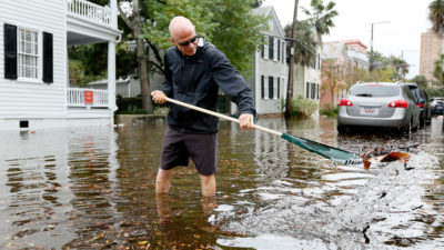 "A Charleston, South Carolina resident removes debris from a drain during tidal flooding in October 2015. The city now experiences 50 days of ""sunny day"" flooding a year."