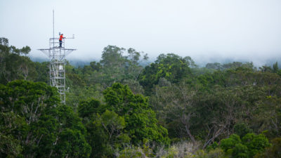 A research tower, part of the AmazonFACE project in Brazil, where scientists measure the forest's response to climate change.