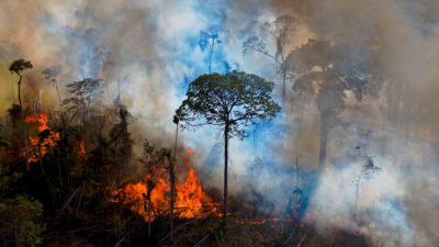 Smoke rises from an illegally lit fire in the Amazon in Para state, Brazil, on August 15.
