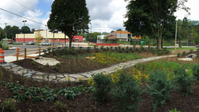 A rain garden manages stormwater runoff in Philadelphia's Germantown section.
