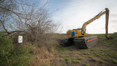 An excavator clears trees for the border wall at La Parida Banco, part of the Lower Rio Grande Valley National Wildlife Refuge.