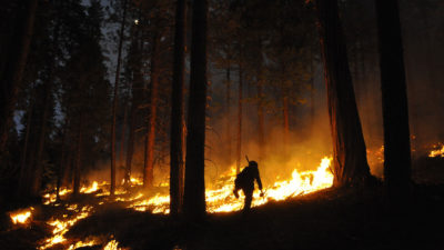 Forest managers set this prescribed burn in California's Stanislaus National Forest.