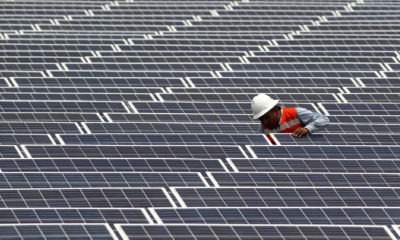 A maintenance worker at solar farm in Zacoalco de Torres, Mexico.