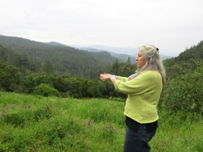 Activist Kellie Anderson wants to protect Napa's remaining forests from encroaching vineyards.
