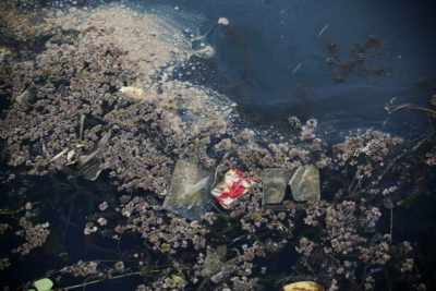 Water full of trash and milfoil, an invasive plant that thrives in nutrient-rich waters and can deplete lakes' oxygen levels, in the town of Tano Ponggol, Lake Toba.
