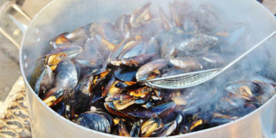 Mussels sold in grocery stores contain between 0.13 and 2.45 microplastic particles per gram of meat.