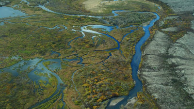 Wetlands in the Bristol Bay watershed in Alaska. Under Scott Pruitt, the EPA has moved to remove Obama-era wetlands protections under the Clean Water Act.