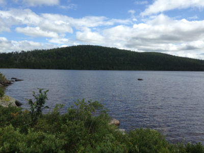 A remote New Brunswick lake sampled for DDT.