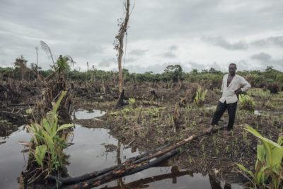 Peatland in the village of Lokolama, Democratic Republic of the Congo.
