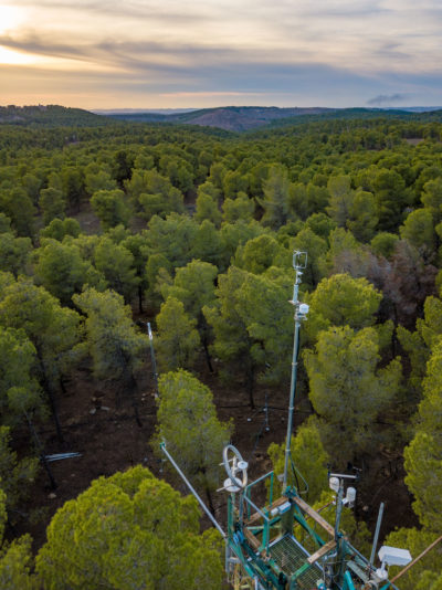 Scientific equipment has measured the exchange of carbon dioxide, water vapor, and energy between the Yatir Forest and the atmosphere for nearly 20 years.