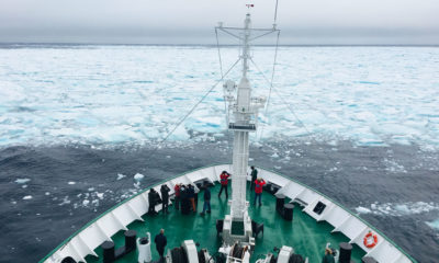 Early in the expedition, the Akademik Ioffe encountered floes of thick sea ice.
