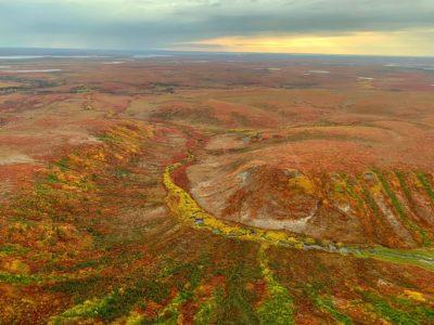 Peatlands in northern Canada's Mackenzie Valley, seen here in autumn.