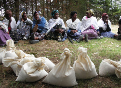 Ethiopian farmers gathered to discuss a trial of 20 different durum wheat varieties, with bags of seeds in the foreground.