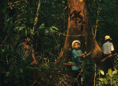 Members of the Kenyah Dayak indigenous group conducting forest surveys in Western Borneo in the early 1990s.