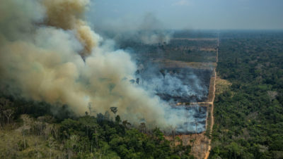 Forest fires in the Amazon in the state of Rondônia, Brazil in August 2019.