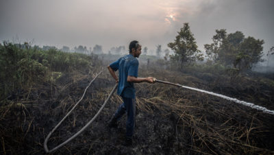 A volunteer extinguishes fires in the peatland area in Palangka Raya, Central Kalimantan, Indonesia.