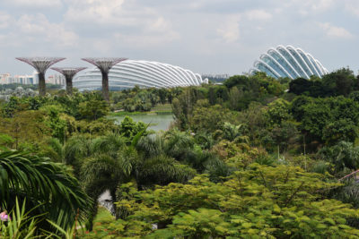 The 250-acre Gardens by the Bay park in Singapore. Nearly half of Singapore's land is comprised of green space and nature preserves.