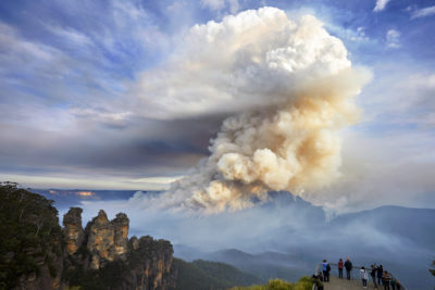 A wildfire in Australia's Blue Mountains National Park in 2018. More and hotter fires are accelerating changes in flora globally.