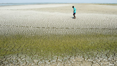 A dried lake bed on the outskirts of Chennai, India, in May.
