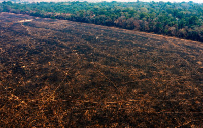 Burned areas of the Amazon rainforest, near Porto Velho, Rondonia state, Brazil, on August 24.