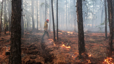 A fire manager conducts a controlled burn to protect a fire-prone area of central Yaktuia, one of Russia's most fire-hazardous regions.