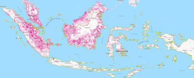 Forest loss (areas in pink) in Indonesia from 2001 to 2016.