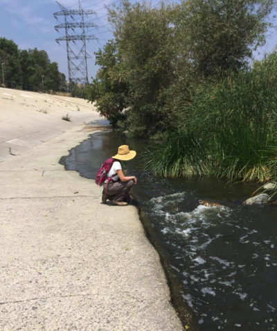 Nature Conservancy biologist Sophie Parker in the the Glendale Narrows section of the Los Angeles River.