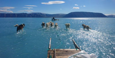 A team from the Danish Meteorological Institute travels by dogsled across a pond of meltwater in northwest Greenland to retrieve equipment on June 13.