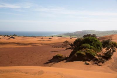 The sand dunes that stretch along the Pondoland coast and up to two kilometers inland are believed to contain some of the world's richest reserves of titanium.